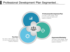 Professional Development Plan Segmented Marketing Ppt PowerPoint Presentation File Show