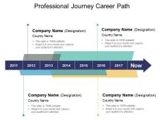 Professional Journey Career Path Ppt PowerPoint Presentation Summary Layout Ideas