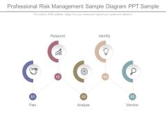 Professional Risk Management Sample Diagram Ppt Sample