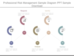 Professional Risk Management Sample Diagram Ppt Sample Download