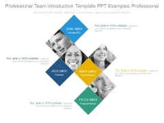 Professional Team Introduction Template Ppt Examples Professional