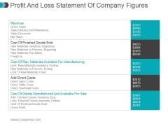 Profit And Loss Statement Of Company Figures Ppt PowerPoint Presentation Examples