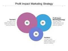 Profit Impact Marketing Strategy Ppt PowerPoint Presentation Slides Graphics Cpb