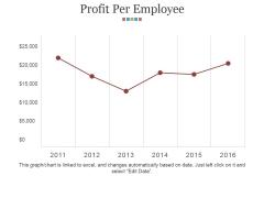 Profit Per Employee Ppt PowerPoint Presentation Summary Slides