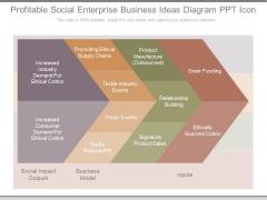 Profitable Social Enterprise Business Ideas Diagram Ppt Icon