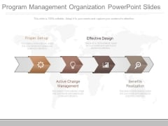 Program Management Organization Powerpoint Slides