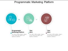 Programmatic Marketing Platform Ppt PowerPoint Presentation Infographic Template Elements Cpb