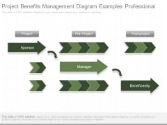 Project Benefits Management Diagram Examples Professional