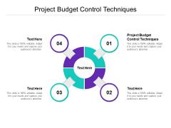 Project Budget Control Techniques Ppt PowerPoint Presentation Portfolio Design Inspiration Cpb