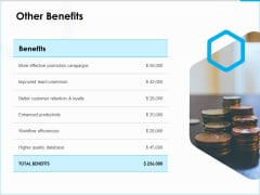 Project Budget Other Benefits Ppt PowerPoint Presentation Icon Display PDF