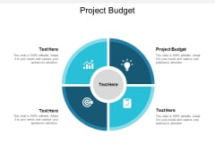 Project Budget Ppt PowerPoint Presentation Icon Shapes Cpb