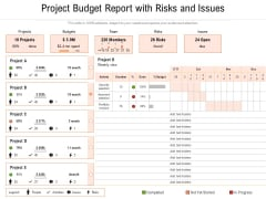 Project Budget Report With Risks And Issues Ppt PowerPoint Presentation File Smartart PDF