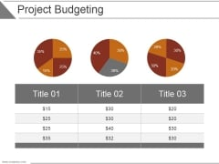 Project Budgeting Ppt PowerPoint Presentation Picture