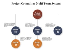 Project Committee Multi Team System Ppt PowerPoint Presentation Summary Skills