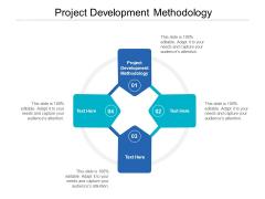 Project Development Methodology Ppt PowerPoint Presentation Show Ideas Cpb