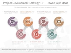 Project Development Strategy Ppt Powerpoint Ideas
