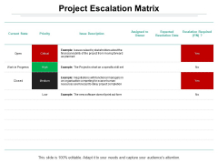 Project Escalation Matrix Ppt PowerPoint Presentation Model Example