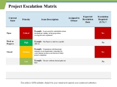 Project Escalation Matrix Ppt PowerPoint Presentation Outline Graphics Template