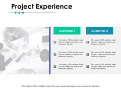 Project Experience Ppt PowerPoint Presentation Portfolio Example