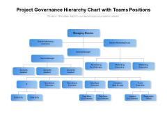 Project Governance Hierarchy Chart With Teams Positions Ppt PowerPoint Presentation File Background