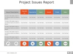 Project Issues Report Ppt PowerPoint Presentation Slide