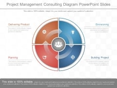Project Management Consulting Diagram Powerpoint Slides