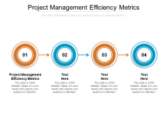 Project Management Efficiency Metrics Ppt PowerPoint Presentation Ideas Model Cpb