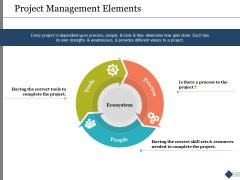 Project Management Elements Ppt PowerPoint Presentation Ideas Background Images