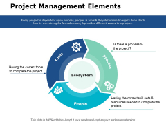 Project Management Elements Ppt PowerPoint Presentation Pictures Example