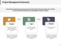 Project Management Elements Ppt PowerPoint Presentation Portfolio Icons