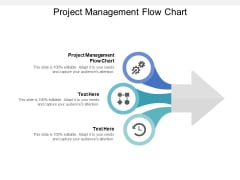 Project Management Flow Chart Ppt PowerPoint Presentation Show Pictures