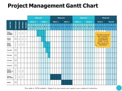 Project Management Gantt Chart Budget Ppt PowerPoint Presentation Gallery Picture