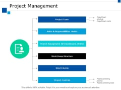 Project Management Ppt PowerPoint Presentation Layouts Examples