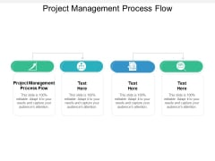 Project Management Process Flow Ppt PowerPoint Presentation Pictures Example Cpb