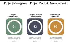 Project Management Project Portfolio Management Internal Audit Challenges Ppt PowerPoint Presentation Portfolio Slide