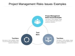 Project Management Risks Issues Examples Ppt PowerPoint Presentation Pictures Show Cpb Pdf