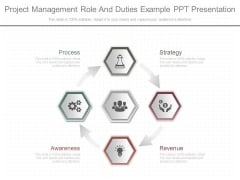Project Management Role And Duties Example Ppt Presentation