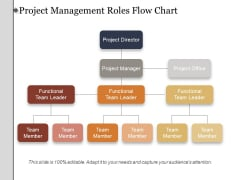 Project Management Roles Flow Chart Ppt PowerPoint Presentation Summary Aids