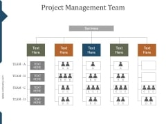 Project Management Team Ppt PowerPoint Presentation Clipart