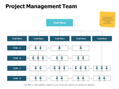 Project Management Team Ppt PowerPoint Presentation File Background Image