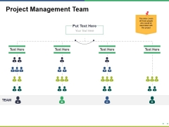 Project Management Team Ppt PowerPoint Presentation Gallery Shapes