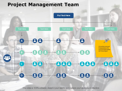 Project Management Team Ppt PowerPoint Presentation Icon Skills