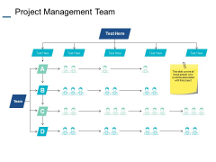 Project Management Team Ppt PowerPoint Presentation Infographic Template Deck