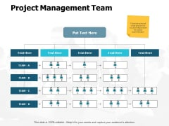 Project Management Team Ppt PowerPoint Presentation Inspiration Icon