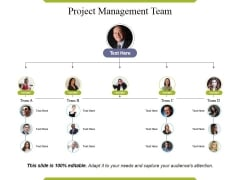Project Management Team Ppt PowerPoint Presentation Layouts Layout Ideas