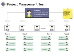 project management team ppt powerpoint presentation model ideas