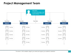 Project Management Team Ppt PowerPoint Presentation Outline Icons