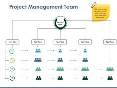 Project Management Team Ppt PowerPoint Presentation Pictures Example