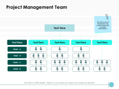 Project Management Team Ppt PowerPoint Presentation Pictures Gallery