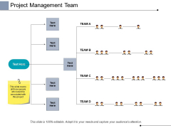 Project Management Team Ppt PowerPoint Presentation Pictures Show